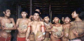 Supervivientes de la masacre de Haximú, en la que dieciséis yanomamis fueron asesinados por buscadores de oro ilegales, sujetan las urnas con las cenizas de sus parientes. © C Zacquini/ Survival